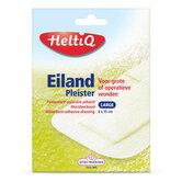 Eilandpleister-Small-Medium-Large